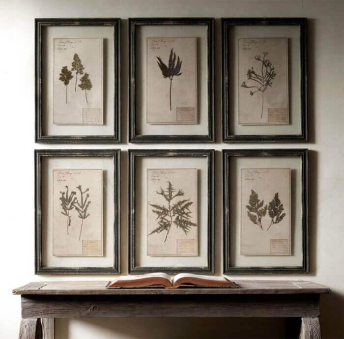 Декор стены гербарием из растений