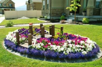 многолетние цветы для клумбы