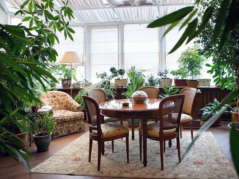 Додавання зелених рослин в інтер'єр квартири