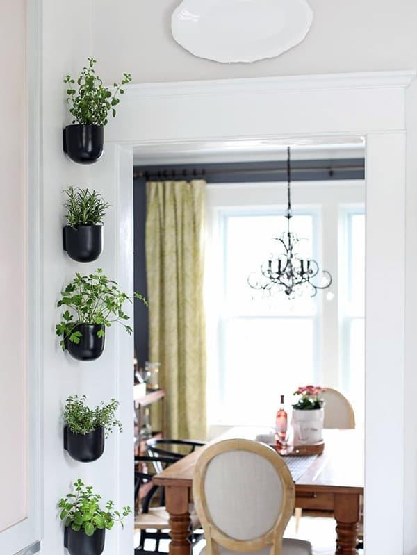 Живые зеленые растения в интерьере квартиры